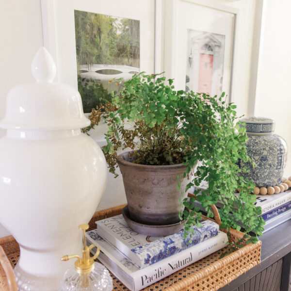Oakland Apartment Home Tour | The Entry
